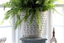 Olive Basket Decor Ideas / Creative ways to use an olive basket in your home decor.