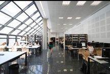 Biblioteca de Psicologia  i Esport  / Avda. Blasco Ibáñez, 21 - 46010 València