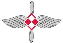POLISH AIR FORCE
