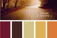 Color Inspiration / My very favorite color palettes across the web.