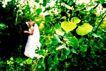 Wedding Photographers / Our most preferred photographers at The Wild Basin Lodge in Allenspark, CO! www.wildbasinlodge.com / by Wild Basin Weddings