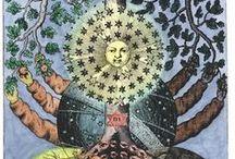 Myths, archetypes, symbols