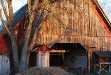 Barns that say Hay! / by Sandie Sturdivant Steadman