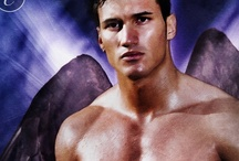 Building a Book--WOUNDED ANGEL / Third book in the EARTH ANGELS series, published by Carina Press.  Release date: 5/13