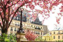 """MY PARIS / """"There is but one Paris"""" Vincent Van Gogh / by D e b o r a h C a r l s o n"""