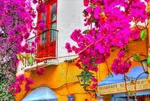 Malaga Travel & Food / The best things to do, see and eat in Malaga, Spain. A Malaga travel guide via Pinterest!