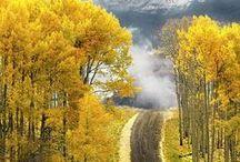 Colorado = Beautiful / by Heather Jolley Bridenstine