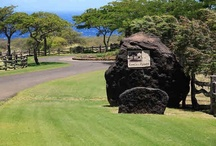 North Kohala (Hawi) Real Estate Listings / Residential home and land listings in North Kohala on the Big Island from Puakea Ranch through Hawi and Kapaau to Pololu Valley http://beth.hawaiilife.com/