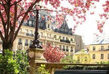 Paris in my Heart / My soul city of romance, long walks, delicious food & wine and happy exploring.