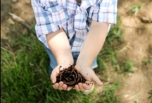 Green Living / Honoring Mother Earth- ideas families looking to do their part.