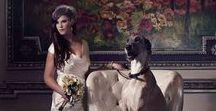 Glamorous Wedding / Inspiration for a glamorous wedding in Cleveland