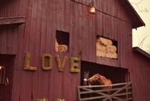 Barn Beautiful / by Candice Johnson