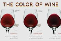 wine - the knowledge / Great info graphics, posters and crib sheets giving all kinds of essential wine information.