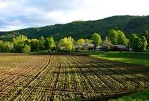 Vermont / Just a few of the reasons we LoVermont!