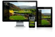 Client Creative - Websites / Insivia past and present creative that has been done for our clients!