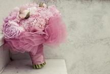 Wedding Flowers / by Sadie Bertsch