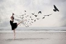 let your heart sing / {dreaming, visioning and spreading your wings}