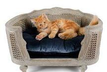 LUXURY PET / accessori di lusso per animali