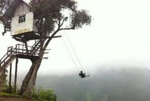TREE-houses / by A.R.T.K.I.T.E.K.T.U.R