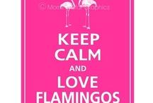 Flamingos!!! / by Patti Vincent