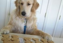 DIY pet treats & cures / dog bones, dog treats, healthy dog food, cat treats, pet natural cures, flea and tick prevention