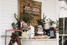 A Rustic Christmas / by Bonnie