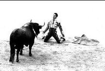 CORAÇÃO TOUREIRO / Nas palavras  fustigar os cavalos do destino ...        zurzir os flancos da morte num canto intrépido      de sangue e glória ....  e na arena do poema a vida inteira arriscar ... em ritual supremo                de raça e razão ... da luz a vitória              --- JOAKIM PAZ