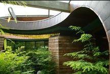 TREE house / by Eva Miller of KapKaDesign