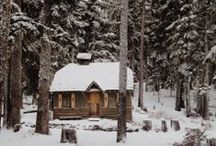 Cabin / by Holly Ehlenfeldt Stockman