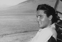 ELVIS / by Tracy Guillozet