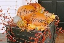 holidays: fall / by Jenney Yoss