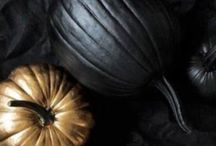 Fall. / Recipes, Clothing, and all general Fall Inspiration / by Hannah (Shively) Morris