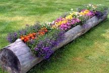 Gardening / by Lillian-Emile Buteau