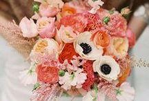 Wedding bouquet love / by Kristin Schmucker