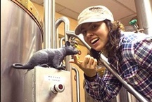 Women & Craft Beer / Stories, news and events about the inspiring women in the craft beer industry.  / by Deschutes Brewery