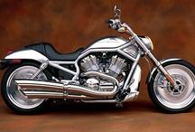 Harley Davidson / Fotos de motos Harley Davidson. Galería con ejemplo de las clásicas Harley Davidson y las más modernas. / by soyunalbondiga