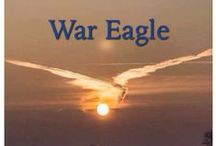War Eagle!! / by Sandy Hudman