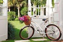 B I K E S * PEDAL POWER / OLD BIKES, NEW BIKES, FLOWER BIKES & RACING BIKES! / by Paula Wedger