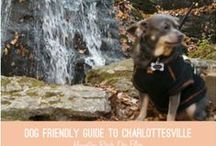 Pets & Animals / Posts about our furry friends from our Paw Prints blog. http://www.hamptonroadsmag.com/Paw-Prints/