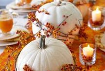 Autumn: Pumpkins! / Autumn ushers in the beauty of rich color and PUMPKINS. Add a little sparkle and it's a perfect season!