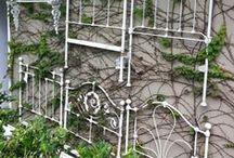 Garden Ideas / Ideas for my garden - plants, design etc.