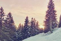   Christmas   Winter   / by Emily Sievert