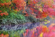 Autumn/Fall / by Kathie Warren