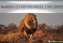 Namibia Is For Dreamers / Between self-drive road trips to well-kept national parks, and fly-in luxury safaris for adventurers looking to get lost in true wilderness, Namibia has something for every traveler looking to slow down. Let the bucket listers have the well-trodden, tourist-y destinations, Namibia is for dreamers and explorers.   http://www.globalbasecamps.com/featured-destinations/namibia-tours