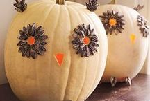 Fall / aka pumpkin everything / by Kelly Greive