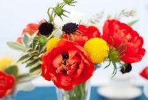 flowers / by Robyn Winwood