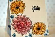 My Card Creations / My StampinUP! Card Creations