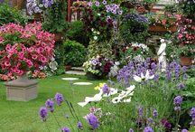 Beautiful Gardens / gardens you could imagine yourself in