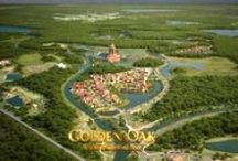 Golden Oak - Disney World / I've dreamed of living at Disney since I was a little girl and people though I was crazy! But now it's possible, because I didn't mean *near* Disney, I meant INSIDE. Golden Oak is a planned community within the bounds of Walt Disney World and I WILL make this lifelong dream a reality!
