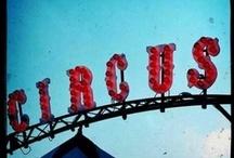 Circus / by Krista Liepina